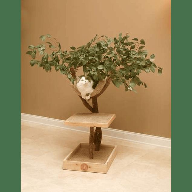 Arbol tronco natural 2 niveles