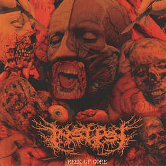 INSEPSY - Reek Of Gore CD