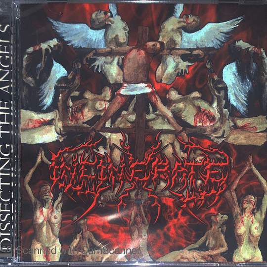INCINERATE - Dissecting The Angels CD