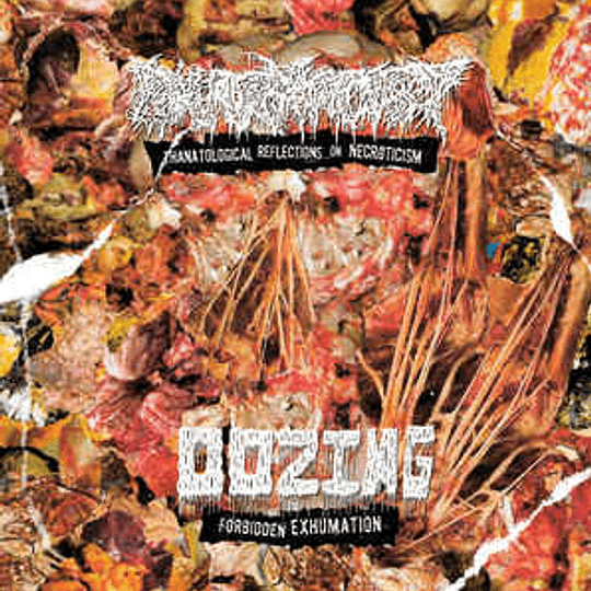 OOZING / PHARMACIST - Forbidden Exhumation / Thanatological Reflections On Necroticism CD
