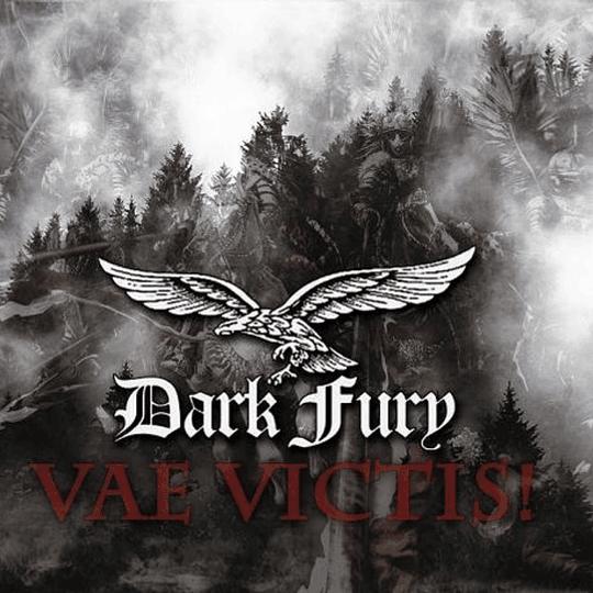 CD - DARK FURY - Vae Victis! DIGIPACK