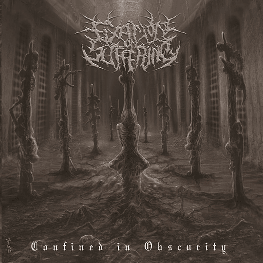 FIXATION ON SUFFERING -  Confined In Obscurity CD