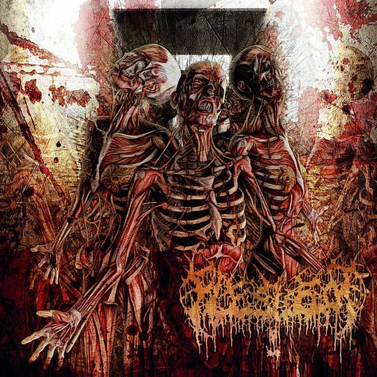 FLESHROT -  Traumatic Reconfiguration CD