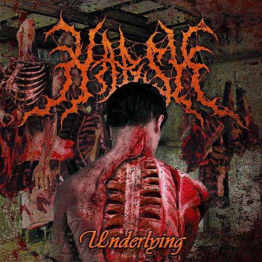 HARSH - Underlying CD