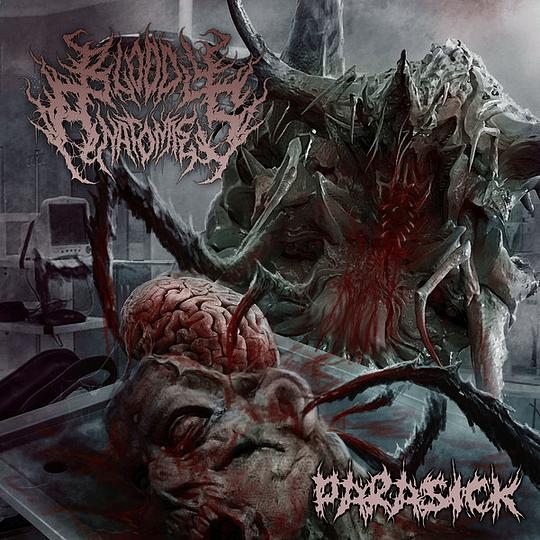 BLOODY ANATOMIES -  Parasick CD