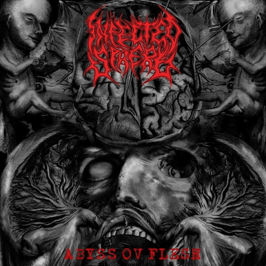 INFECTED SPHERE - Abyss Ov Flesh CD