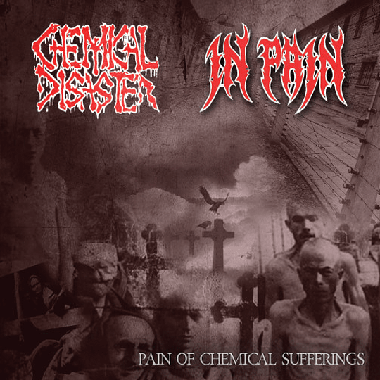 CHEMICAL DISASTER / IN PAIN  - Pain Of Chemical Sufferings SPLIT CD
