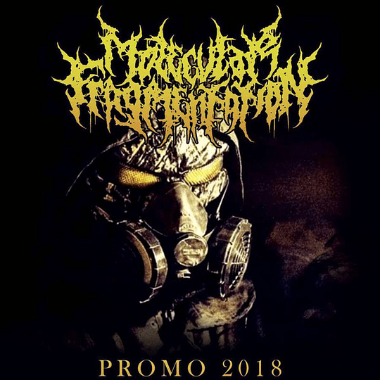 MOLECULAR FRAGMENTATION - Promo 2018 CDR