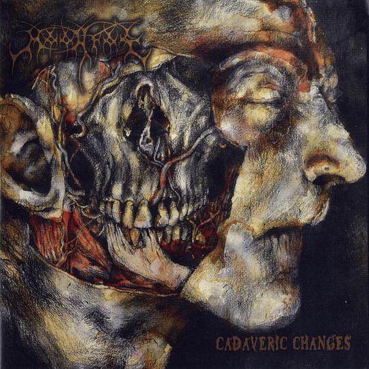 MOONFOG - Cadaveric Changes CD