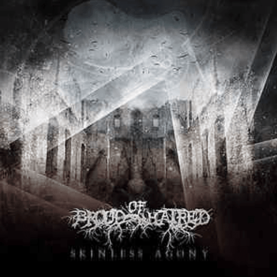 BLOOD OF HATRED - Skinless Agony CD