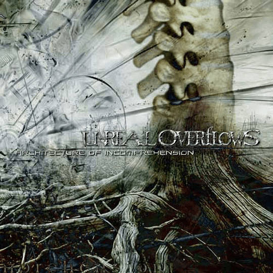 UNREAL OVERFLOWS - Architecture Of Incomprehension CD