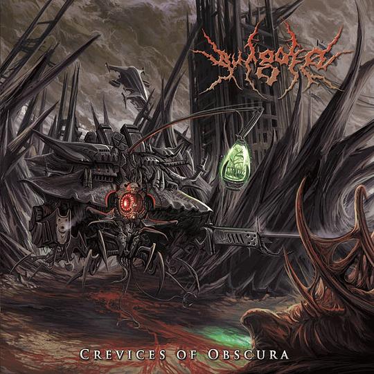 VULGORE - Crevices Of Obscura CD
