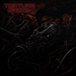 TORTURE DROID - Torture Droid DIGIPACK CD