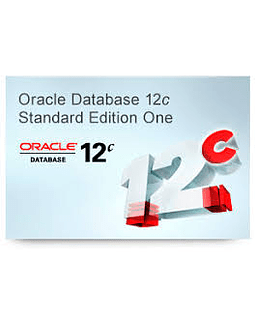 Oracle Database Standard Edition 2