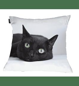 Almofada Decorativa - Pretinho