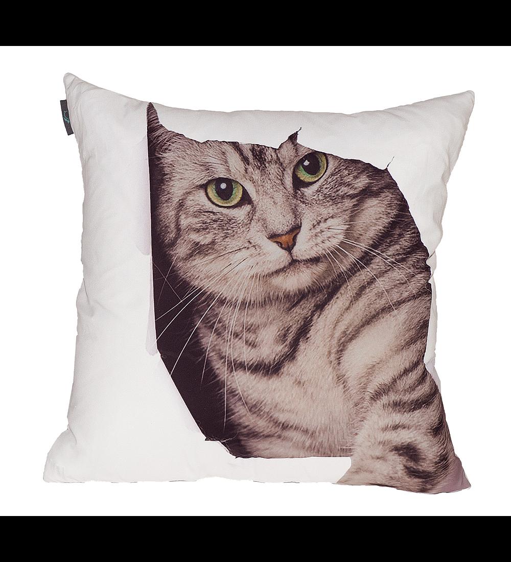 Almofada Decorativa - Cat 1