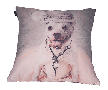 Almofada Decorativa - Dog 1