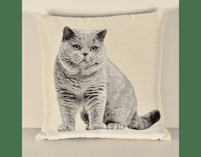 Almofada Cat