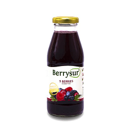 Jugo 5 berries 250ml