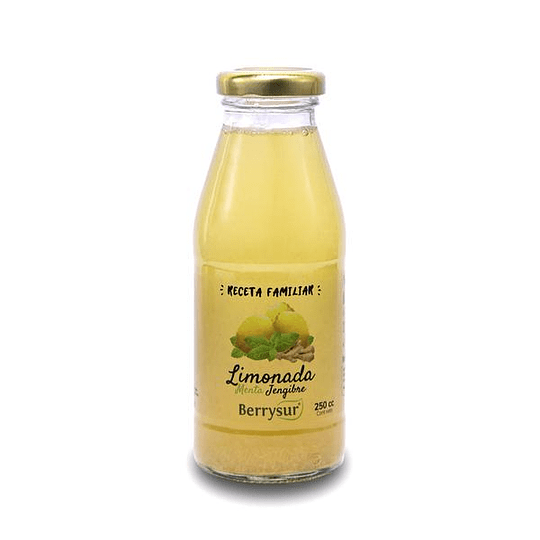 Jugo limonada menta jengibre 250ml