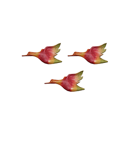 Trío Patos Pequeños