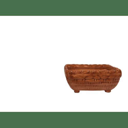 Canasta Suculenta