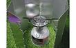 Set olla compacta + mini cocinilla plato grande +cubre viento