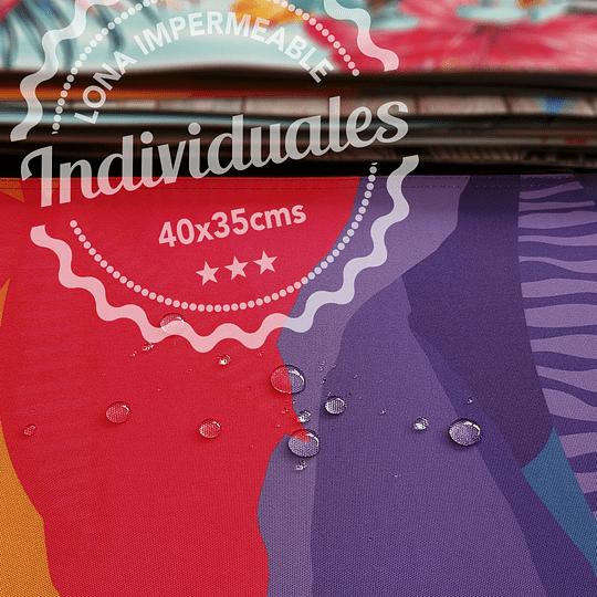 Pack Individual Botánica Uno