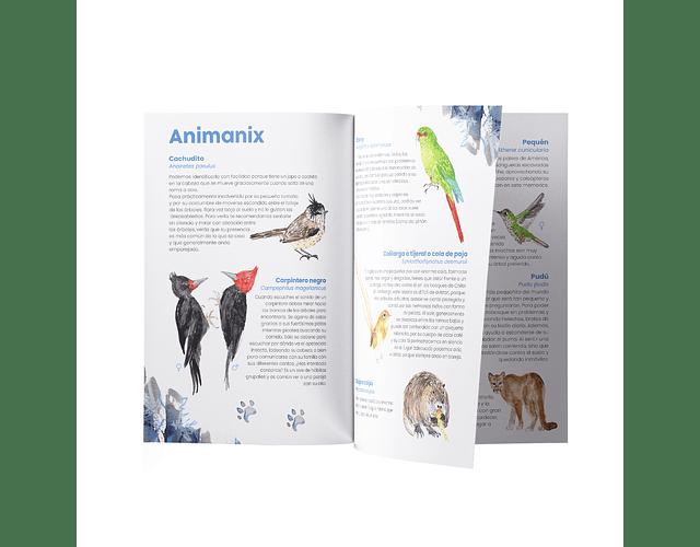Memorice Fauna chilena Catalina Mekis con Imanix