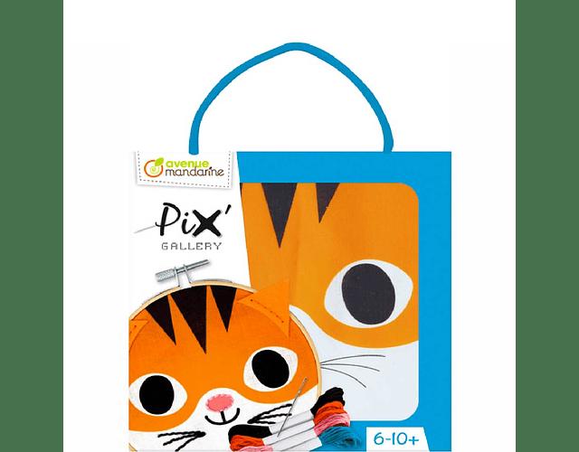 Pix Gallery Tamboril Gato