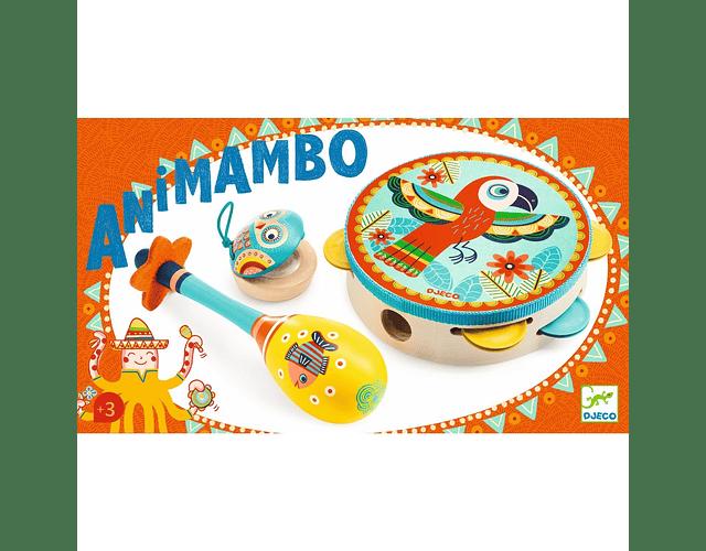 Set 3 Instrumentos percusión Animambo
