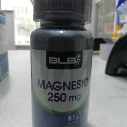 MAGNESIO 250MG 90 COMP