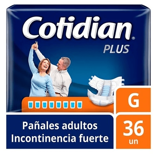Cotidian Plus talla G 36 UNDS