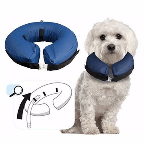 Collar isabelino inflable