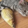 Pez relleno de catnip