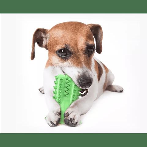 Masajeador dental cactus