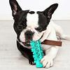Masajeador dental stick