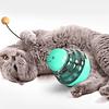 Dispensador snack para gatos