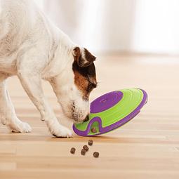 Dispensador dog maze