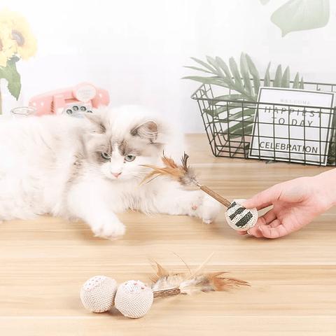 Coyac con catnip
