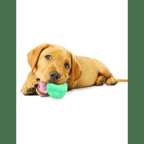 NYLABONE PUPPY GIGGLE BALL