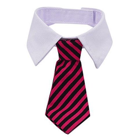 Cuello con corbata S