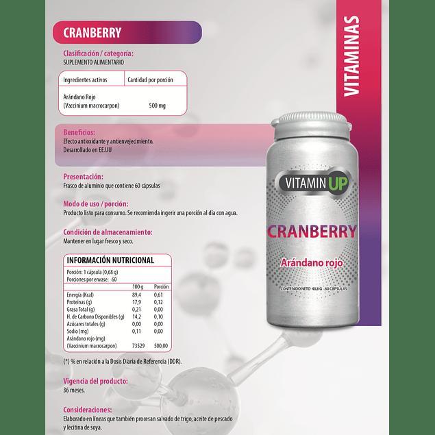 Vitamin Up Cranberry 60 Comprimidos Newscience