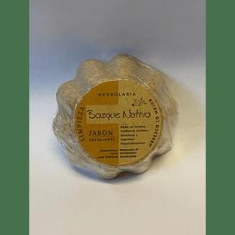 Jabon Exfoliante Herbolaria Bosque Nativo