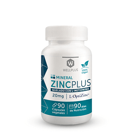 Zinc Plus 325mg 90 cápsulas  Wellplus