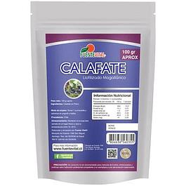 Calafate 100gr  FuenteVital