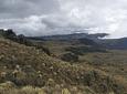 Expedición al Páramo de Chilí