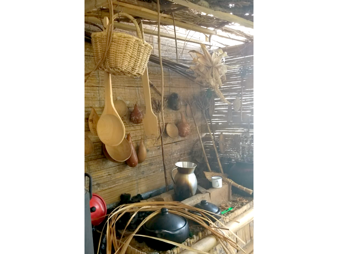 "Expensive Workshop of Basketry ""Bejuqueando Ando"" - Basic Tour"