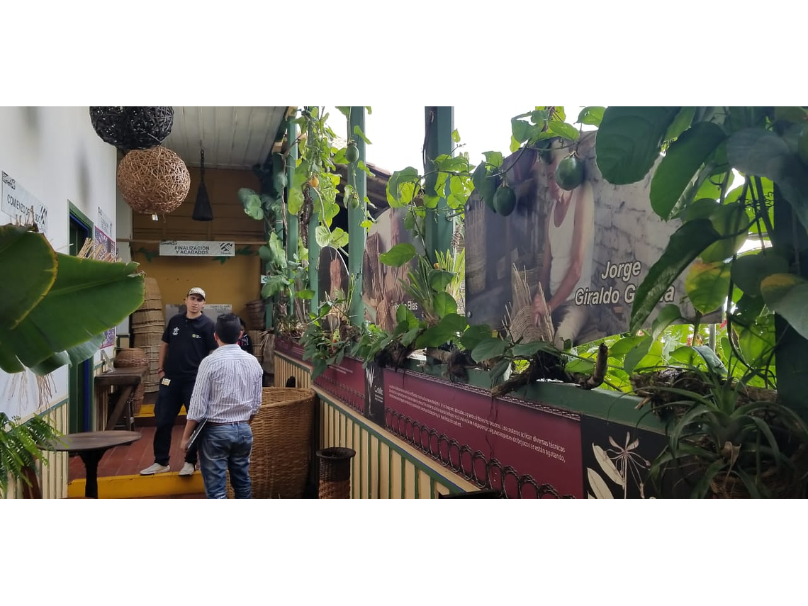 "Cher atelier de vannerie ""Bejuqueando Ando"" - Visite de base"