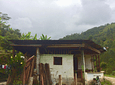 Biodynamic and Permacultural Coffee (Coffee Tour)